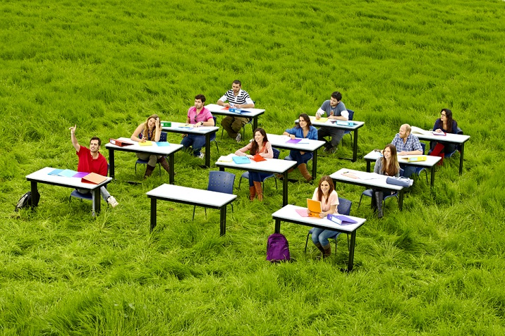 Students studying in the nature